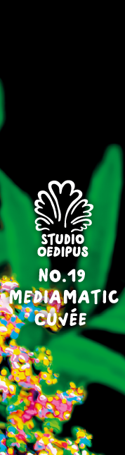 Studio Oedipus No. 19